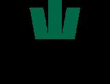 Kronstein Gruppen logo